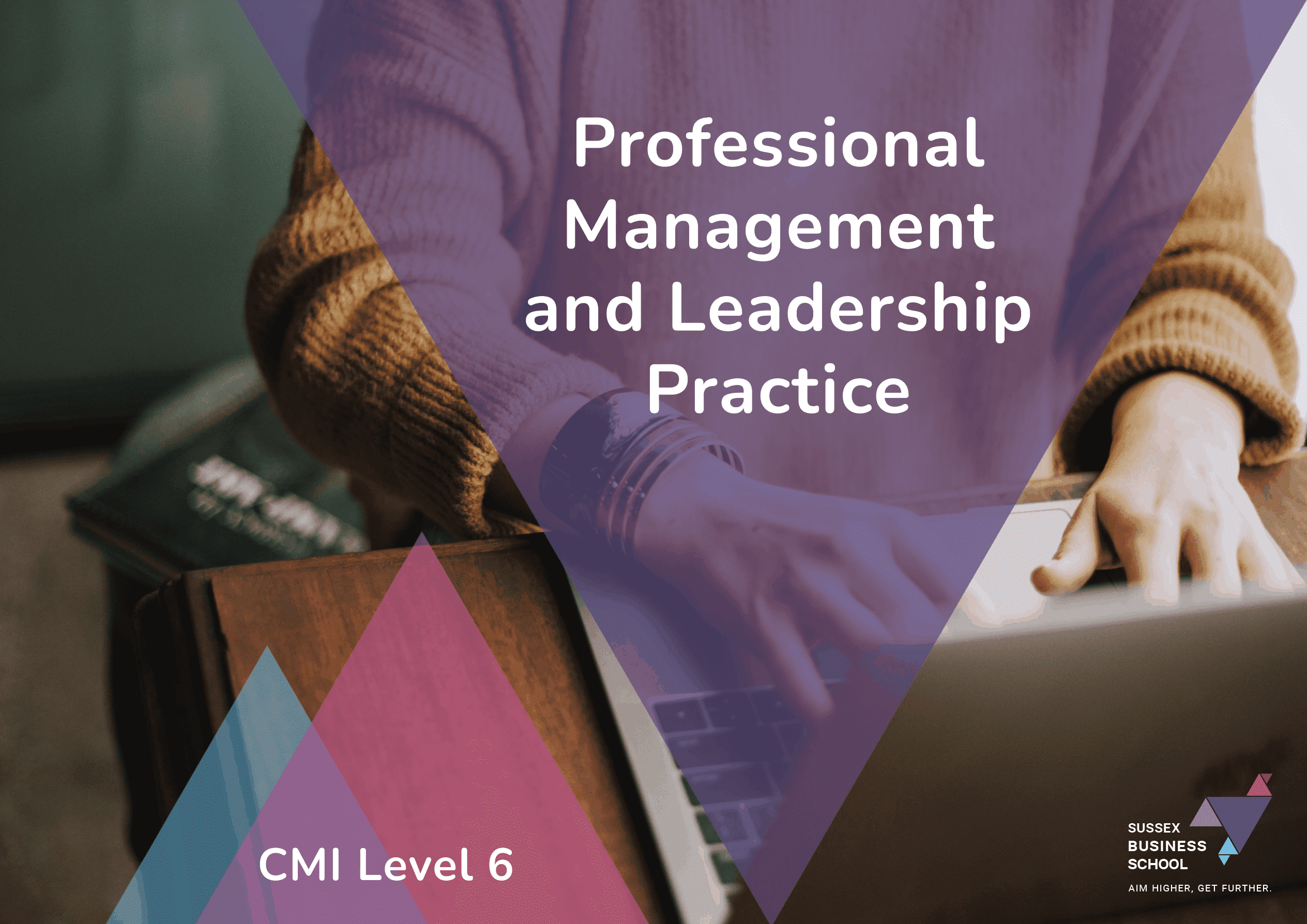 cmi level 6 professional management and leadership practice info pdf
